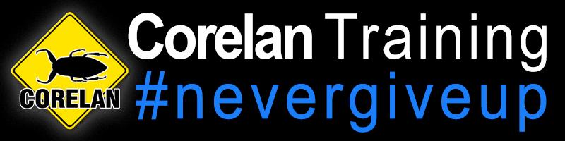 Windows 10 egghunter (wow64) and more | Corelan Team